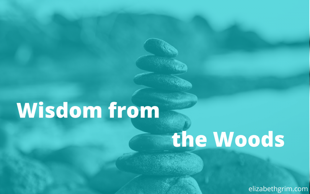 Picture of a hiking cairn with the title: Wisdom from the Woods.