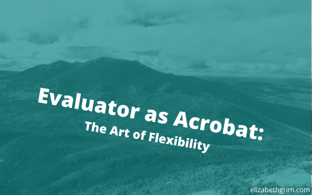 "Picture of the White Mountains with the title: ""Evaluator as Acrobat - the Art of Flexibility."
