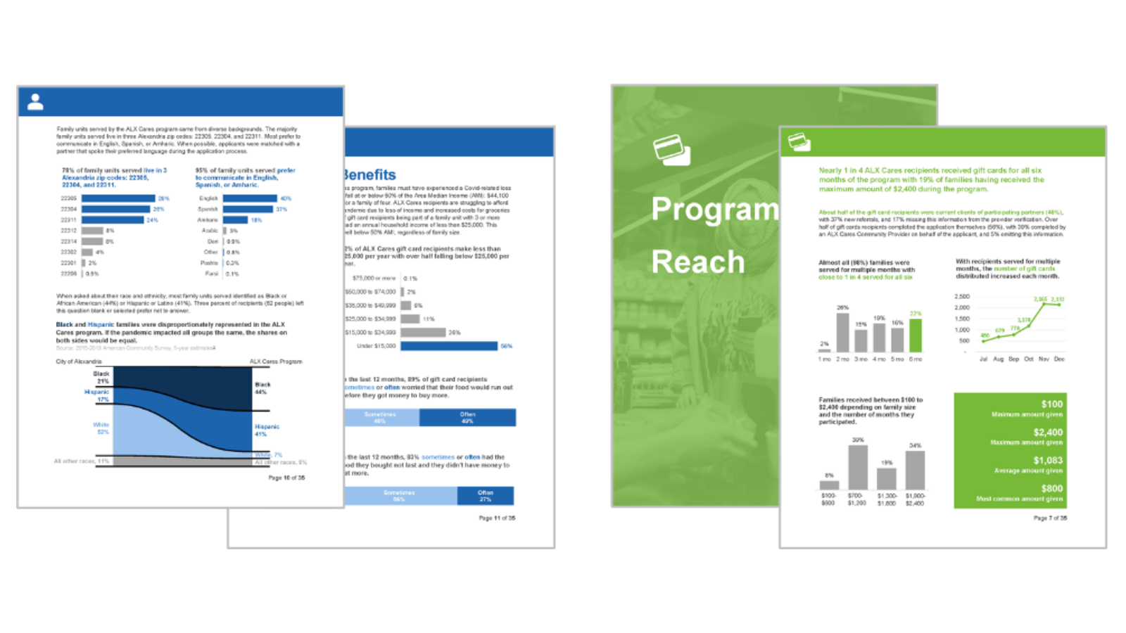 Images of select report pages highlighting skills in report design